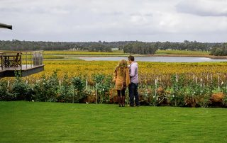 Margaret River Wine Tours