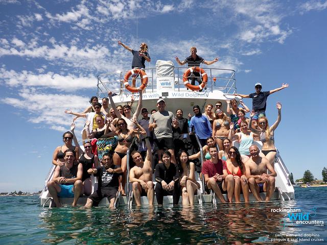 Swim with dolphins in Australia
